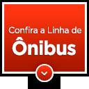 Confira a linha de ônibus